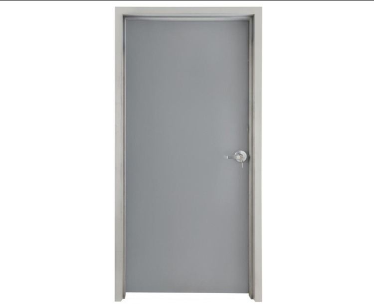Flush Metal Doors